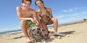 Corrigans Beach Family Friendly Wheelchair Accessible Beach